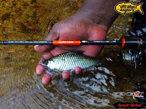 Umpan Troling Rawai Atas tips memancing ikan tengas dengan setup ultralight ultralight fishing tips and tricks for