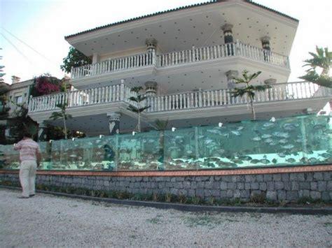 Rumah Lu Aquarium un aquarium g 233 ant fait office de palissade w3sh