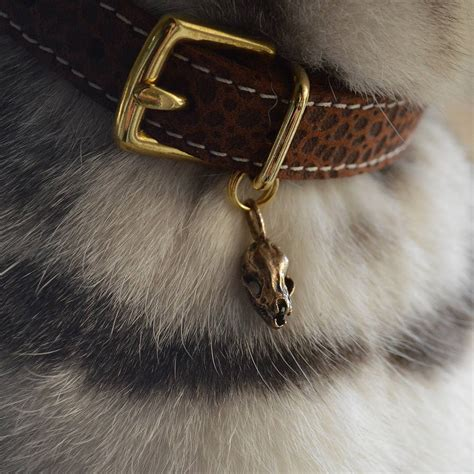 collar charms bat skull charm for cat collars by cheshire wain notonthehighstreet