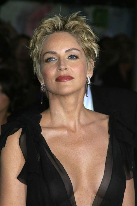 hair gallary in se dc 25 b 228 sta sharon stone id 233 erna p 229 pinterest pixiefrisyr