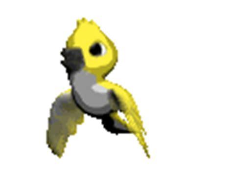 gifs animados de tormentas gifmania gifs animados de aves tropicales gifmania