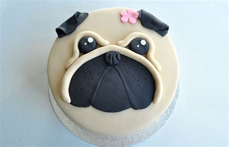 pug cake kildare treats
