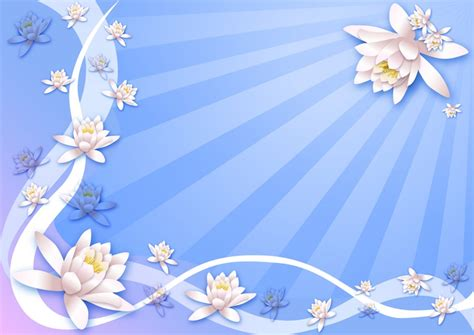 wallpaper bunga lotus wallpaper bunga lotus in frame