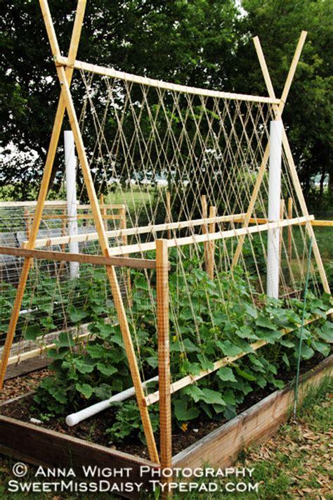 Cucumber Garden Trellis Ideas For Melon Trellis Theeasygarden