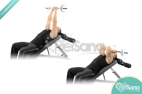 french bench press press franc 233 s en banco inclinado