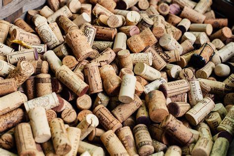 wine pictures   images  unsplash