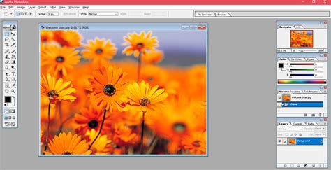 tutorial adobe photoshop ppt getting started with adobe photoshop tutorials tree