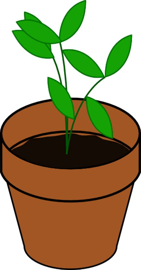 Free Vase Potted Plant Clipart Clipart Panda Free Clipart Images