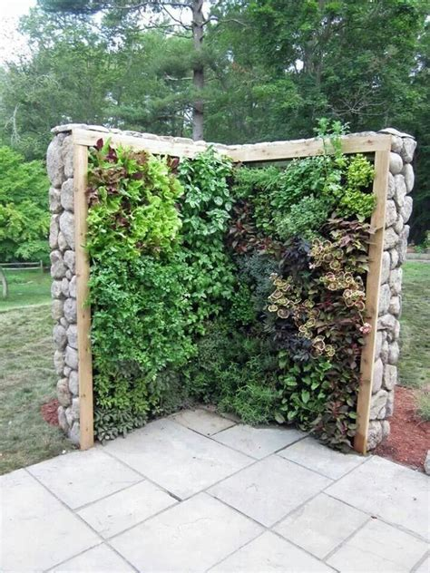 Garden Divider Ideas Garden Divider Search Kitchen Ideas