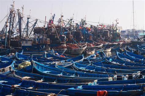 un porto marocco in essaouira immagine stock immagine di pesci cielo