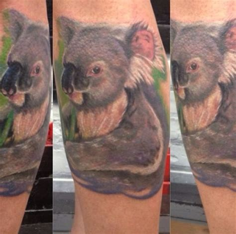 koala bear tattoo 1000 images about on