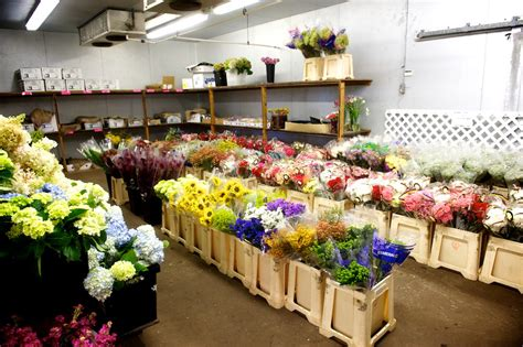 Garden Of Wholesale Nj And Nyc Wholesale Flowers And Garden Center