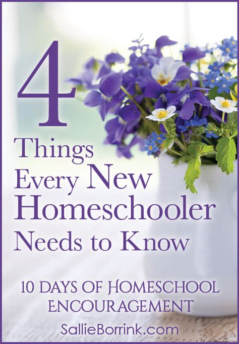 things every home needs 4 things every new homeschooler needs to sallieborrink