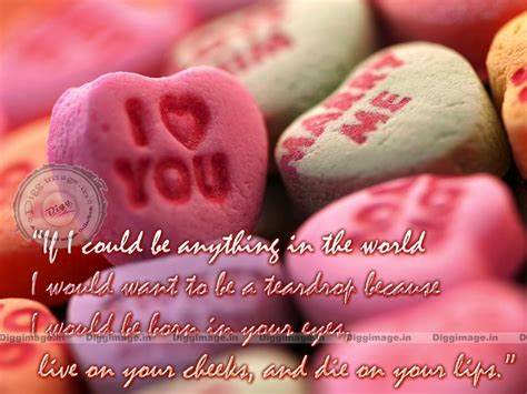 valentines quotes valentines day quotes and sayings quotesgram