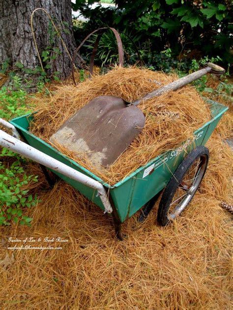 best mulch for flower beds 25 best ideas about garden mulch on pinterest gardening
