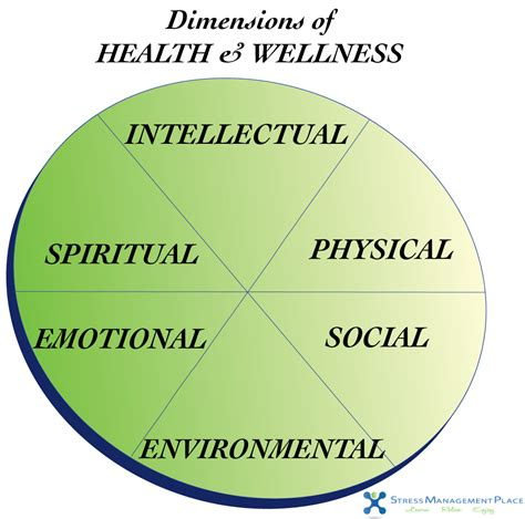 Health And Wellness Essay by Dimensions Of Health And Wellness Essay Writefiction581 Web Fc2
