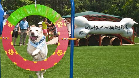 park for dogs how parks create for dogs and owners dr marty becker