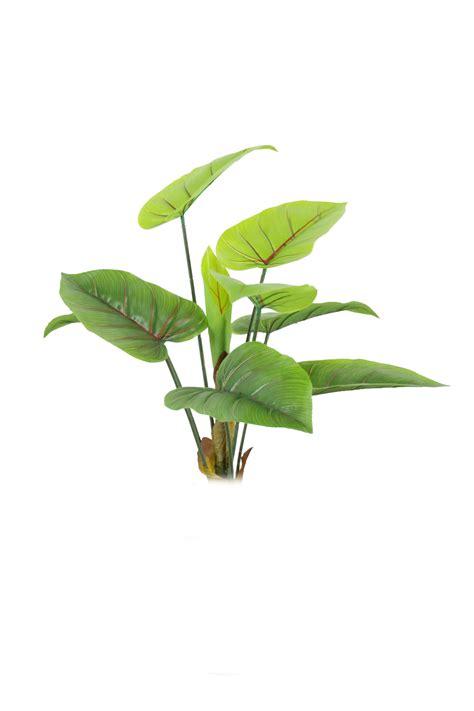 green leaves png image veerendra vijaya pinterest green leaf transparent background pictures to pin on