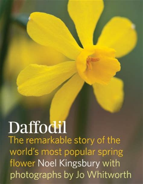 19 facts about daffodils