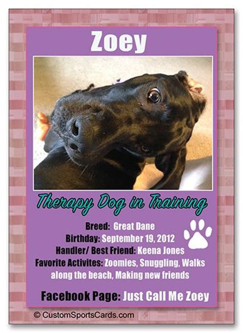 1000 trading cards custom k9 cards 1000 images about therapy dogs canine on