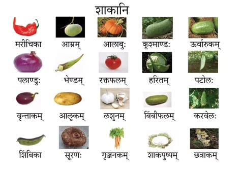 vegetables 5 name what are the names of vegetables in sanskrit and