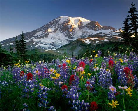 wallpaper permandangan cantik pemandangan cantik google search pemandangan indah