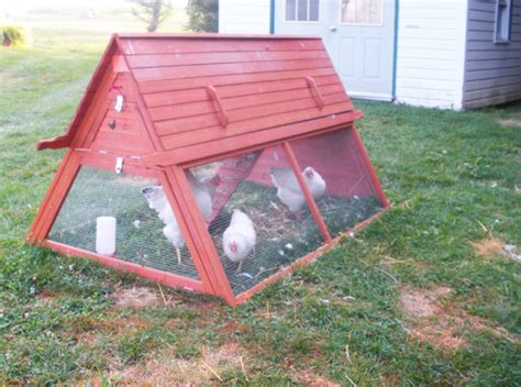 Handcrafted Chicken Coops - portable chicken coop for 3 to 5 hens modern