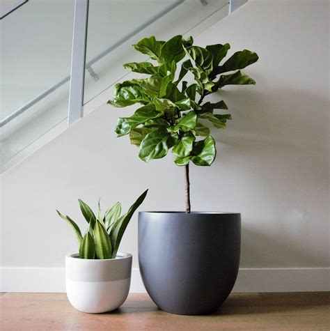 matte grey planter pot indoor outdoor modern