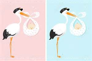 baby shower stork cimvitation