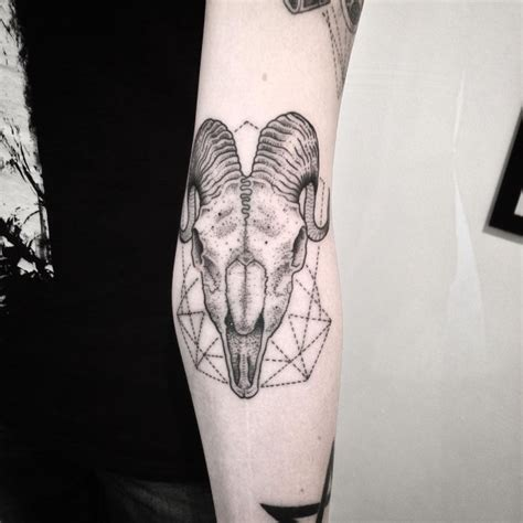 animal skull tattoo black and white animal skull on arm with