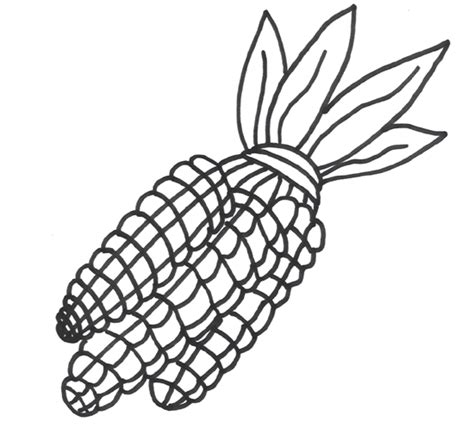 coloring page of indian corn corn stalk coloring page cliparts co