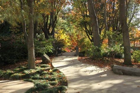 woodwork park 29 best images about shinzen garden on more