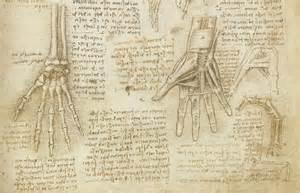 Gallery of leonardo da vinci drawings