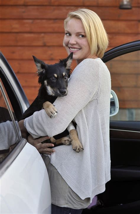 Katherine Heigl Picks Wedgie by Pets Animals Are A S Best Friend