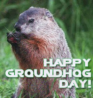groundhog day and happy day animated happy groundhog day quote pictures photos and