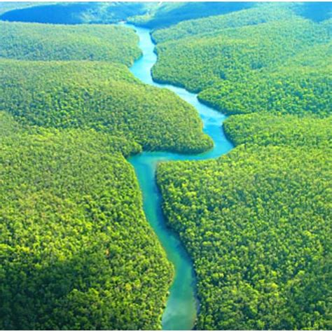 amazon america the amazon river south america amazon pinterest