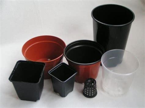 vasi per vivai vasi piante grasse piante grasse vasi per piante grasse