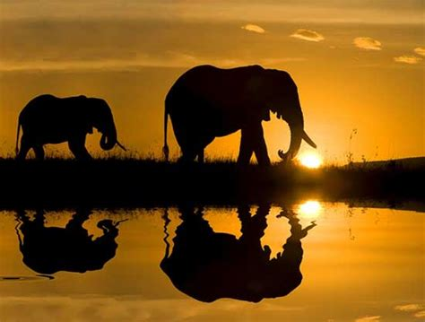 imagenes i love kenia viajar a 193 frica maleta y comida blog centraldereservas com