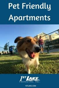 Pet Friendly Appartments by 1st Lake Pet Friendly Apartments Find A Home For You