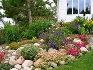 Rock Garden Perennials Perennial Rock Garden Ma