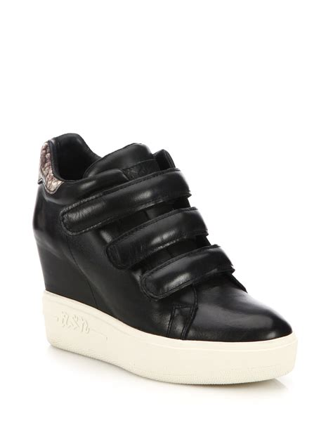 wedge sneakers ash avedon leather high top wedge sneakers in black lyst
