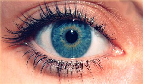 imagenes geniales de ojos 191 qu 233 es vista su definici 243 n concepto y significado