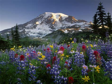 imagenes de paisajes para facebook choosing photos nueva serie de paisajes naturales 10