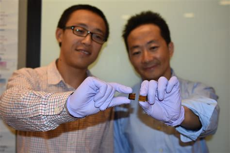 stability challenge stability challenge in perovskite solar cell technology
