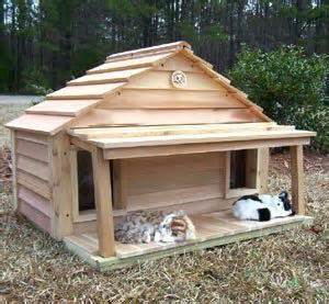 cat outside house sale cedar duplex cat house with porch