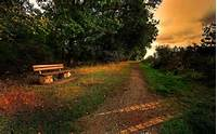 Autumn Colors Beautiful Beauty Bench Clouds Fall Forest Grass
