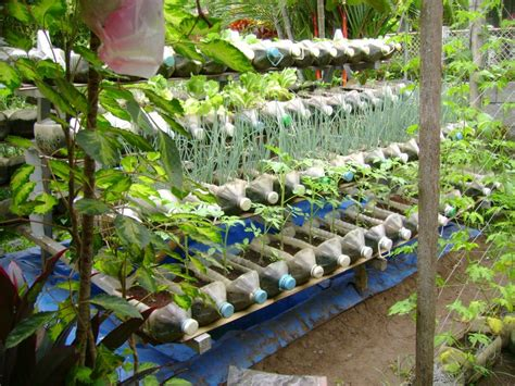 Gardening Nutrients Small Yard Container Gardening To Be Multiplied For All