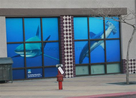 wall  window wraps  iconography long beach orange county ca graphics decals