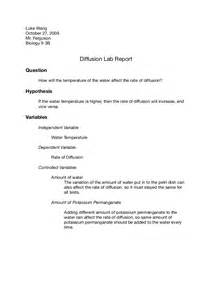 Experiment Conclusion Outline by Diffusion Lab Report