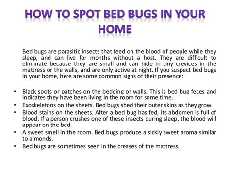 how can i tell if i have bed bugs how to spot bed bugs in your home
